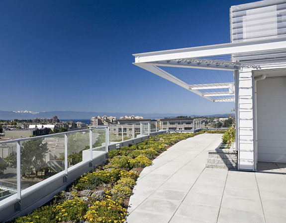 353 Tyee Rd, Victoria, BC V9A 3S3, Canada Synergy Greenroof!