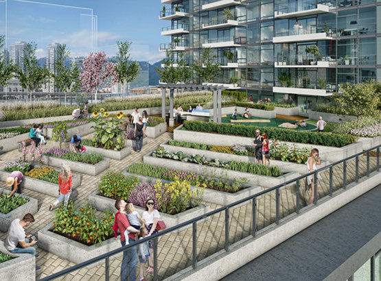3533 Ross Drive, Vancouver, BC V6T 1W5, Canada Rendering Garden!