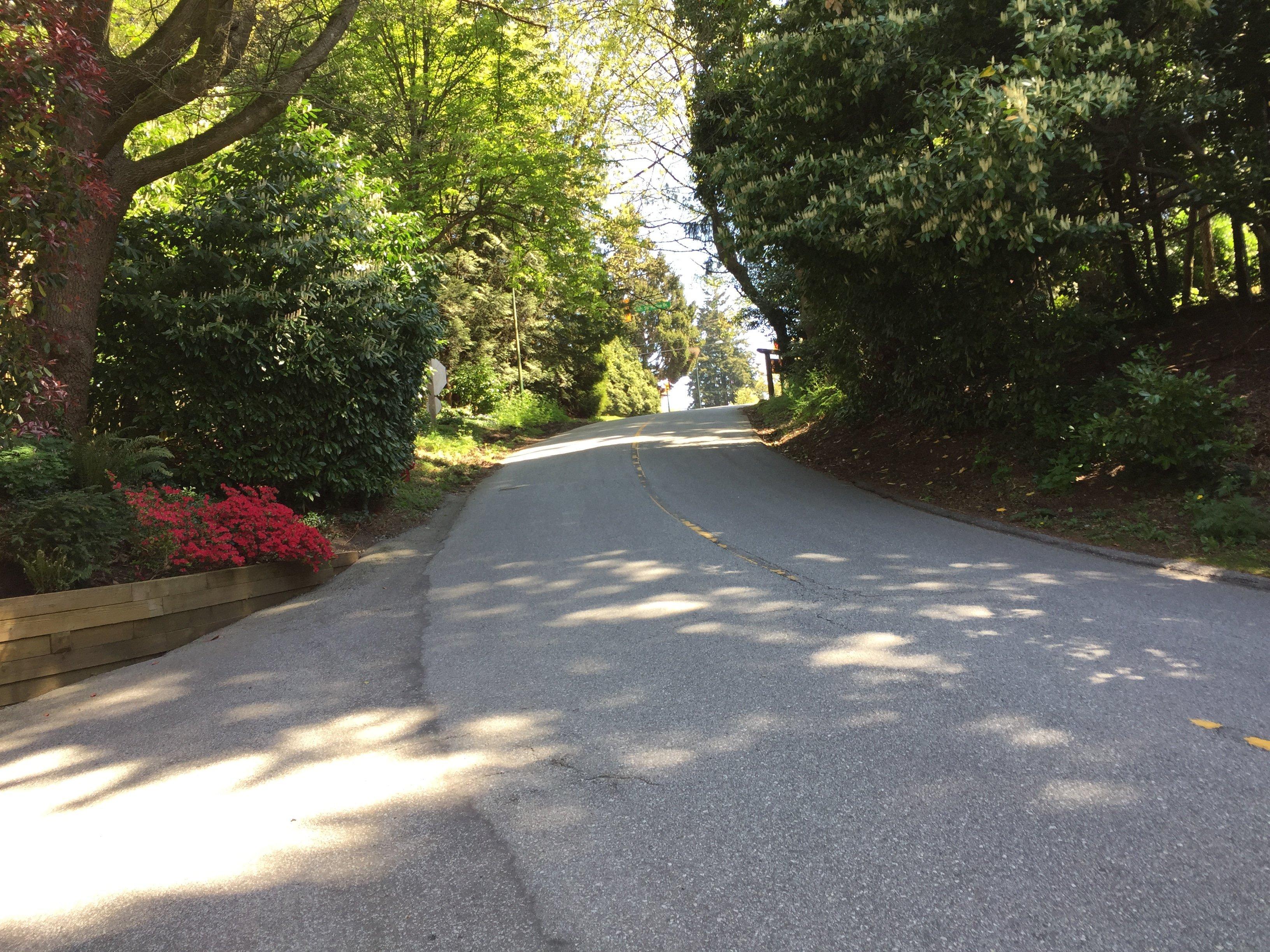 Yewbrook Place Driveway!