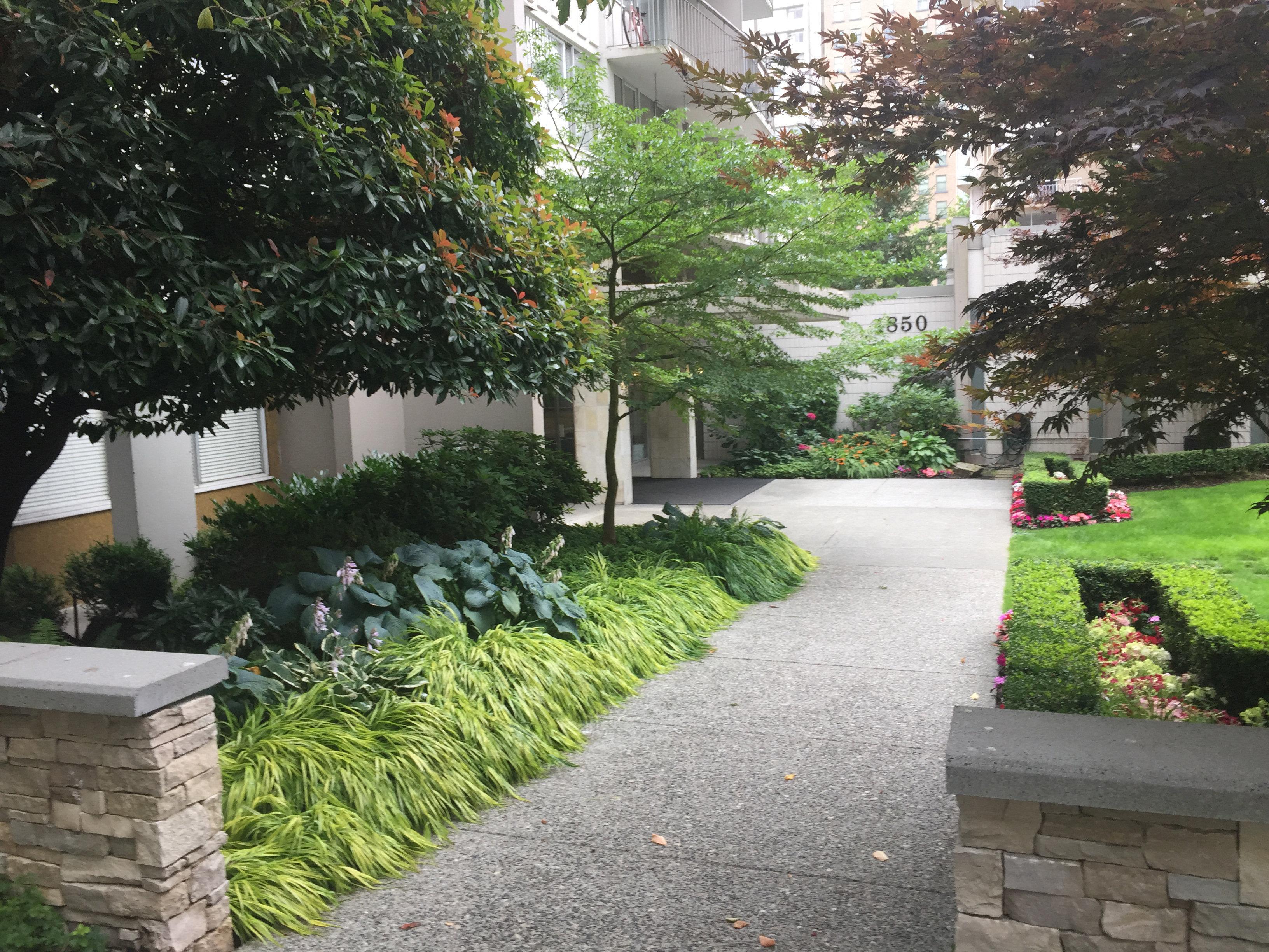 1850comox-Entrance Walkway!