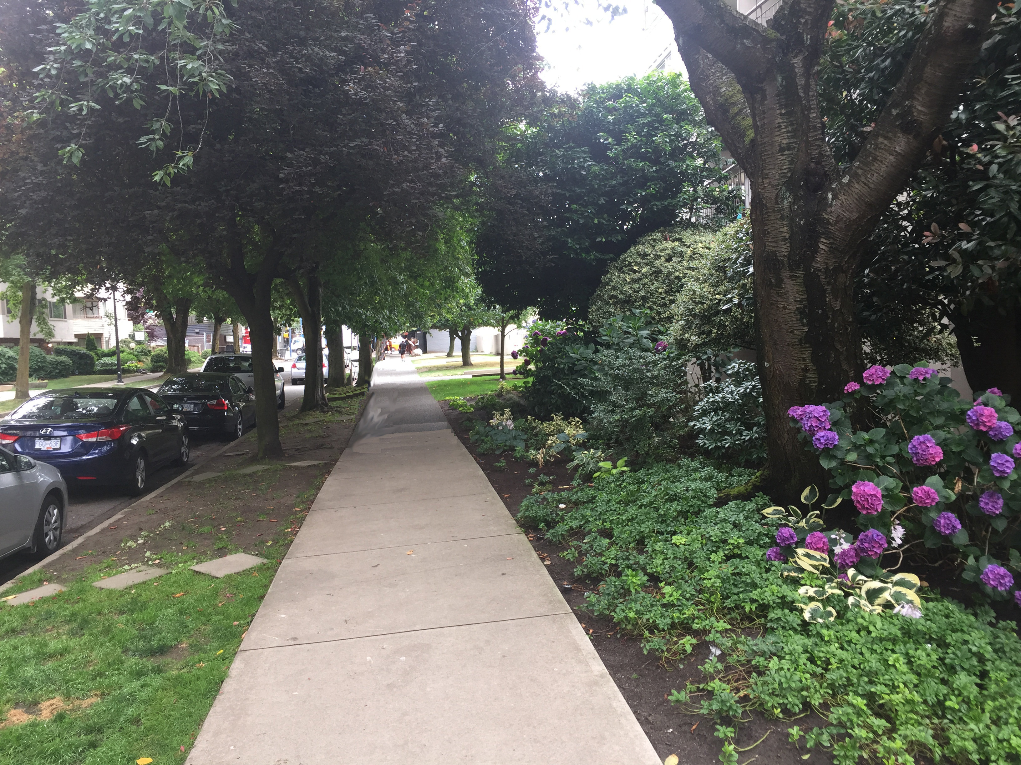 1850comox-Sidewalk!