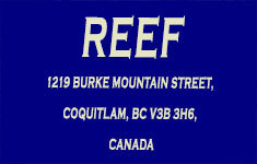 Reef 1219 BURKE MOUNTAIN V3B 3H6