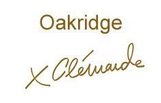 Clemande at Oakridge 650 41 V5Z 2M9