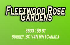 Fleetwood Rose Gardens 8633 159TH V4N 5W1