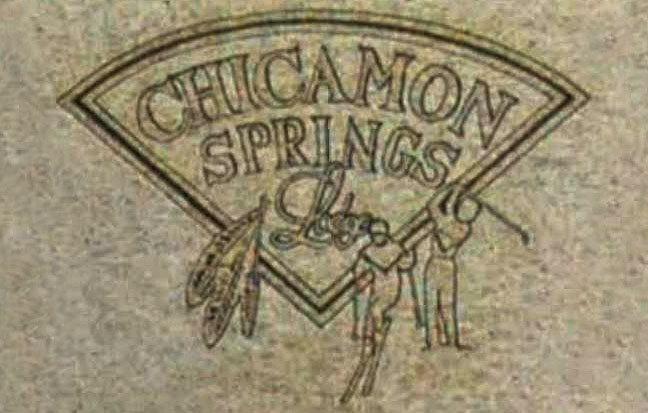 Chicamon Springs 890 DOGWOOD V1A 2Y4