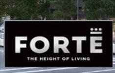 Forte 4477 Hastings V5C 2K1