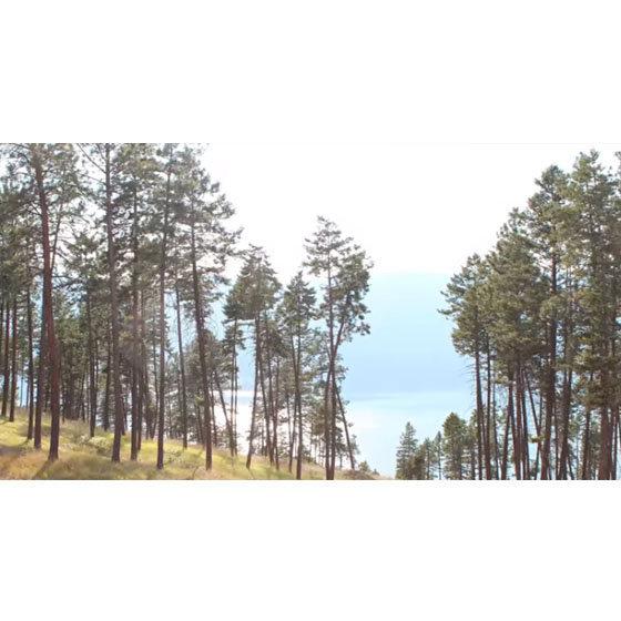 Forest Hills - 3322 Shayler Road, Kelowna - View!