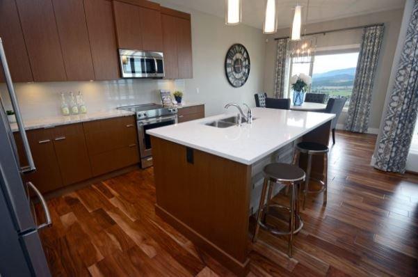 3824 Riviera Dr Kelowna - kitchen area!