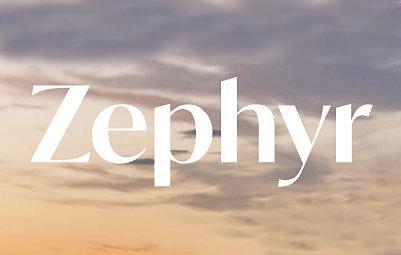 Zephyr 1661 Davie V5Z 1V1