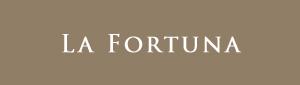 La Fortuna, 788 W. 8th Ave, BC