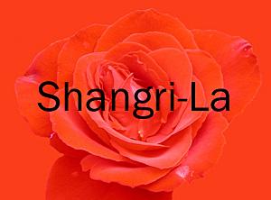 Shangri-La, 1111 Alberni, BC