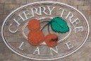 Cherry Tree Lane 15959 82ND V4N 0R2