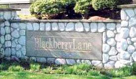 Blackberry Lane 20145 55A V3A 8L6