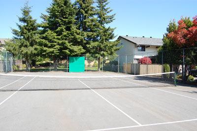 Glencoe Estate - Tennis!