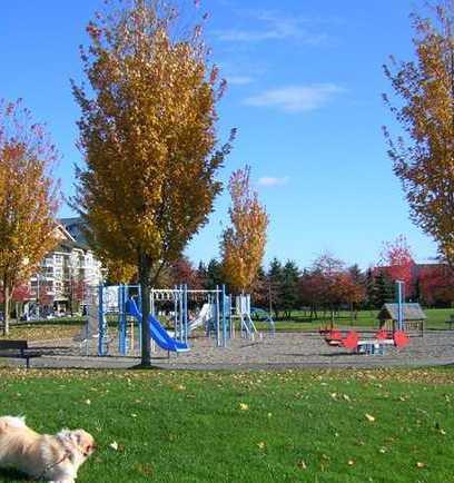 Playground !