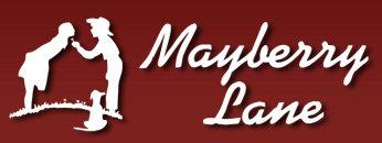 Mayberry Lane 45152 WELLS V2R 5Y3