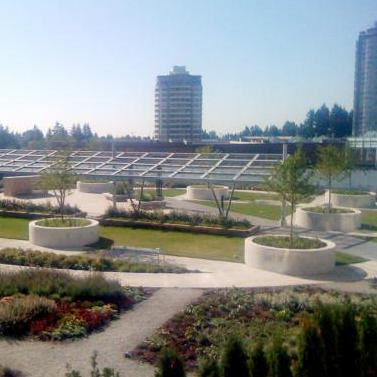 The garden!