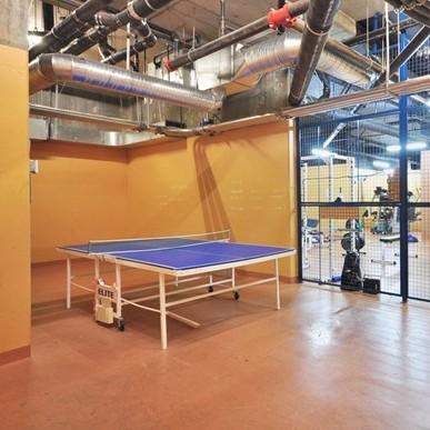 Ping-pong table!