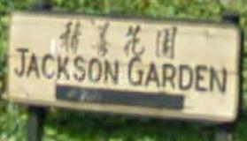 Jackson Garden 513 PENDER V6A 1V3