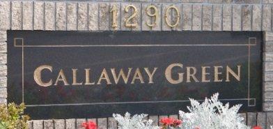 Callaway Green 1290 AMAZON V3B 7Z8