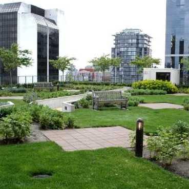 Garden !