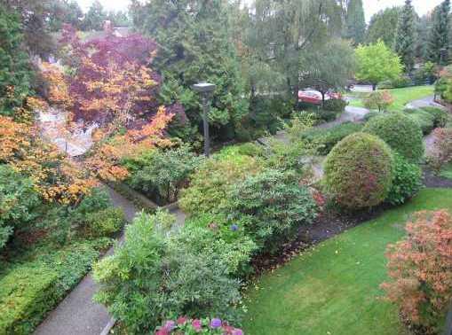 Outdoor Garden!