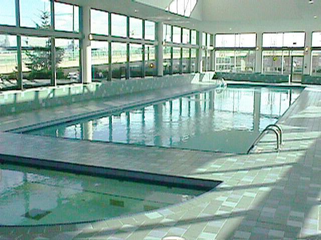 Swimming Pool & Patio!