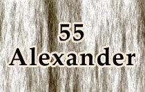55 Alexander 55 ALEXANDER V6A 1B2