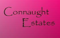 Connaught Estates 623 14TH V5Z 1P7