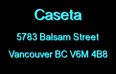 Caseta 5783 BALSAM V6M 4B8