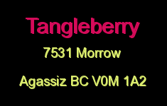 Tangleberry 7531 MORROW V0M 1A2