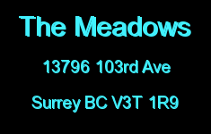 The Meadows 13796 103RD V3T 1R9