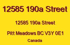Cedar Downs 12585 190A V3Y 0E1