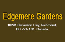 Edgemere Gardens 10291 STEVESTON V7A 1N2
