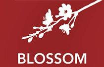 Blossom 707 20TH V5V 0B3