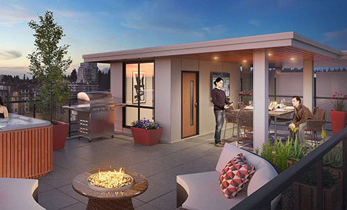3581 Ross Drive, Vancouver, BC V6T 1W5, Canada Rooftop Lanai!