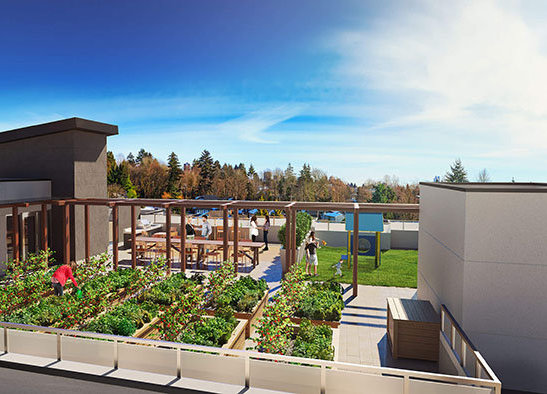 711 W 14th St, North Vancouver, BC V7M 3E8, Canada Rooftop Patio!