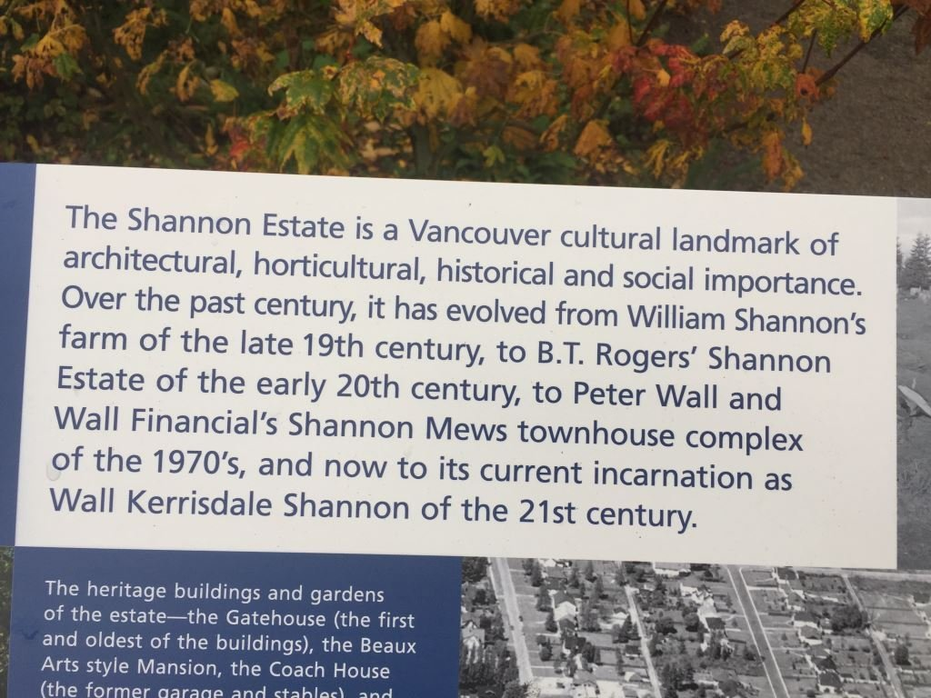 Shannon Wall Centre article!