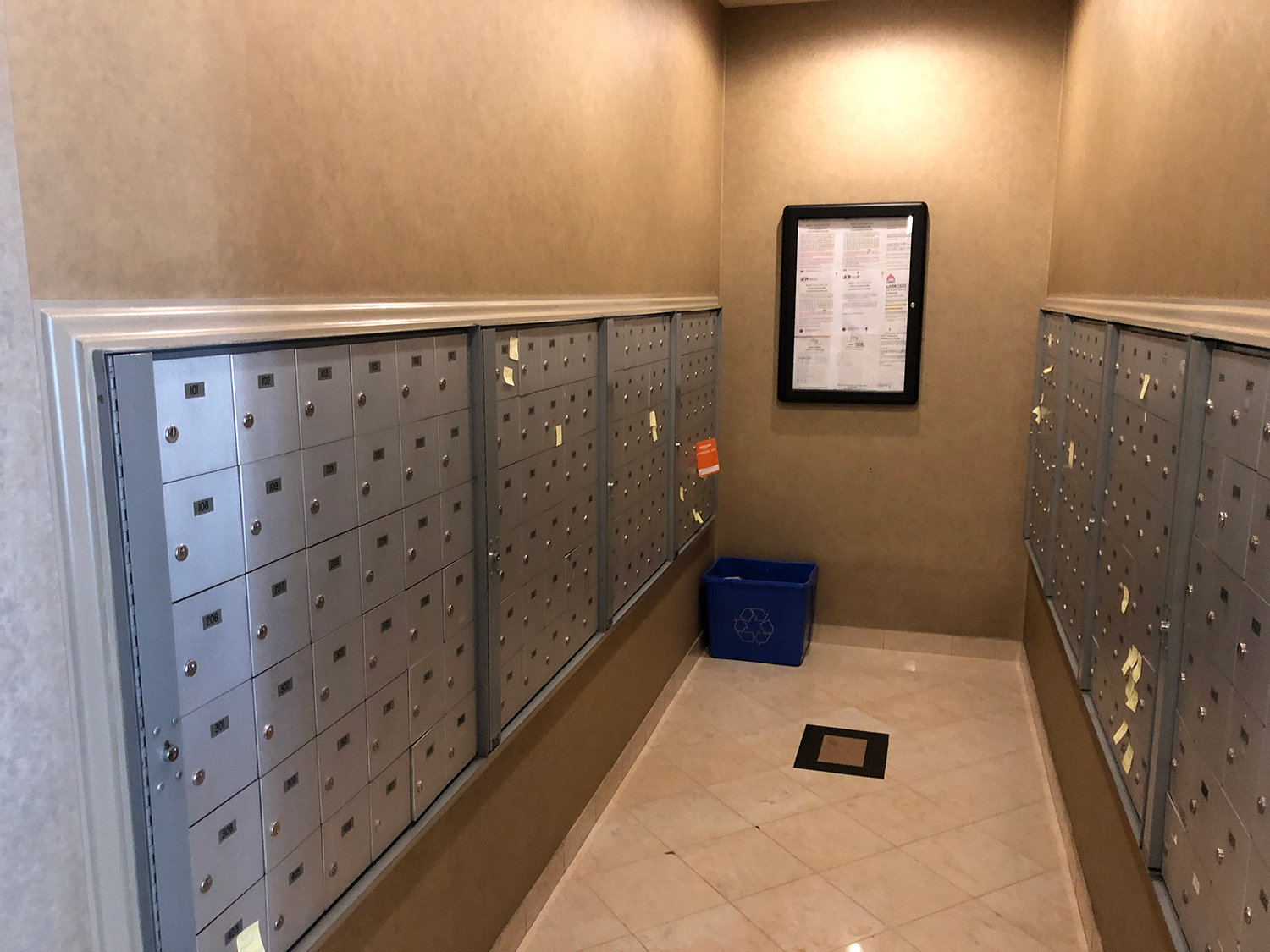The Lions Mail Room!