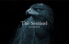 The Sentinel 200 Klahanie V3H 5K3