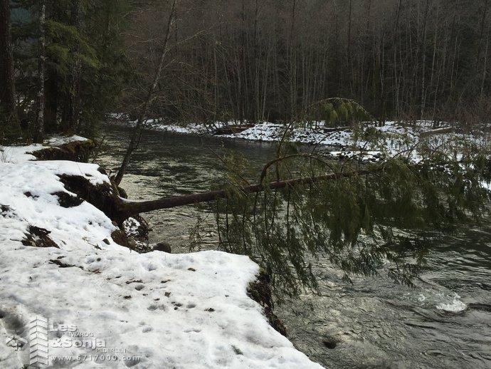 cheakamus river2jpg a.jpg