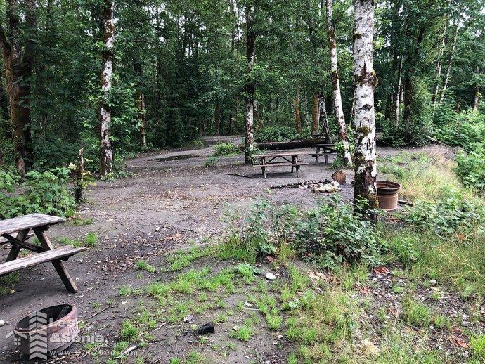 campsite3.jpg